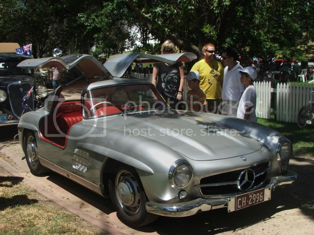 gullwing